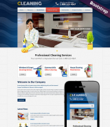 Cleanin web template