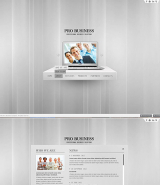 Pro Business web template