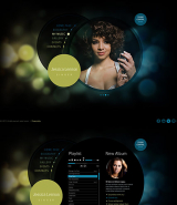 Singer web template