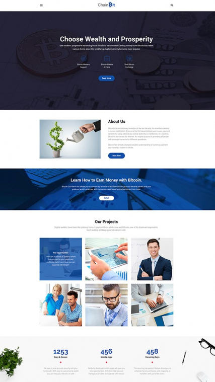 """Bitcoin"" responsive WordPress template"