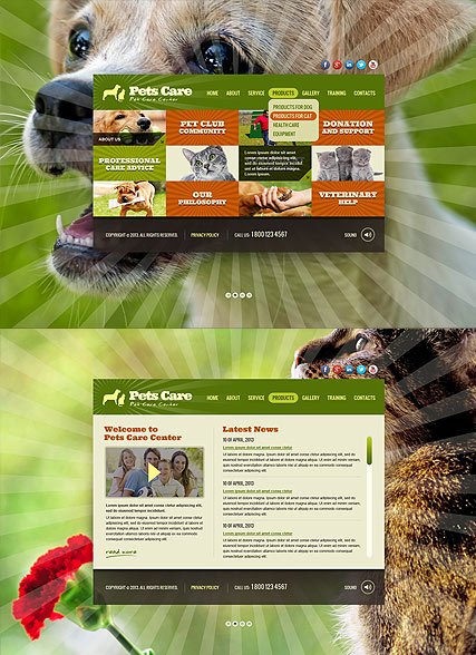 Pet Care Service web template