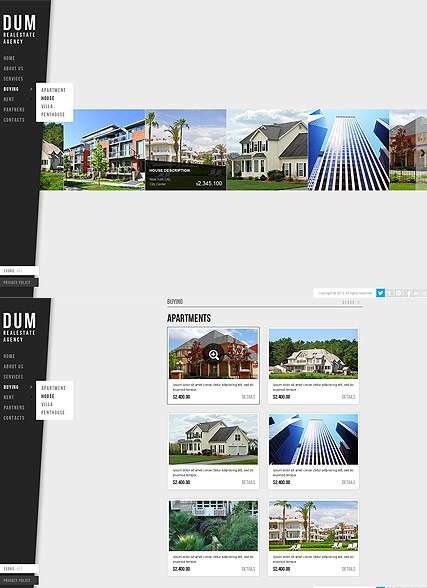 Realestate Agency web template